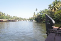House boats on the backwaters