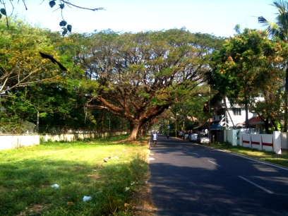 Street in Fort Cochin