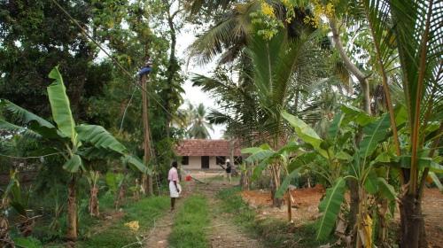 Die Zufahrt zum Haus, in der Ferne stelle man sich ein romantisch-beranktes Tor vor